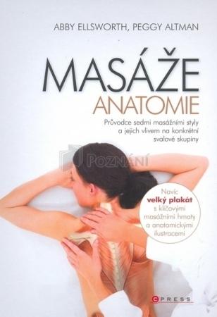 Masáže - Anatómia